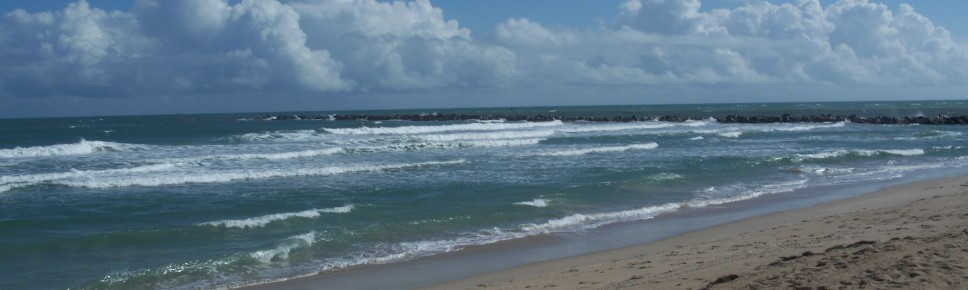 Public Beaches In Port St Lucie Florida Perfect Drive